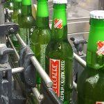 pils-bier-brouwerij-nederland-streekbier-utrecht-deleckere-sfeer-06