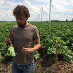 nectar-utrecht-frisdrank-siropen-producent-nederland-streekproduct-utrecht-roze-bunker-sfeer01