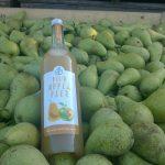 nectar-utrecht-frisdranken-sappen-nederland-biologisch-van-kempen-fruitsappen-sfeer03