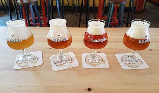 pils-bier-brouwerij-nederland-streekbier-amsterdam-troost-foto-04