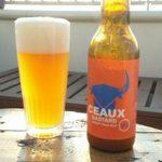 pils-bier-brouwerij-nederland-streekbier-utrecht-ceaux-sfeer-04