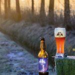 pils-bier-brouwerij-nederland-streekbier-wijk-bij-duurstede-de-dikke-sfeer-01