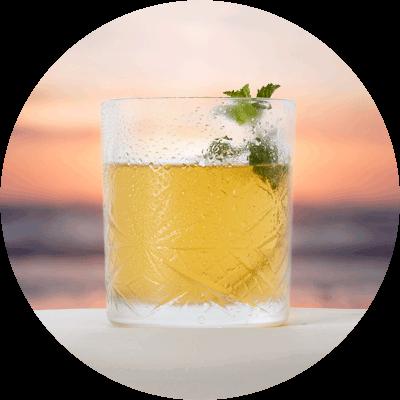 nectar-utrecht-frisdranken-nederland-amsterdam-bims-kombucha-cocktail-02